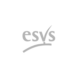 European Society for Vascular Surgery